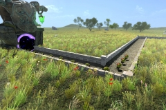 Grassland1